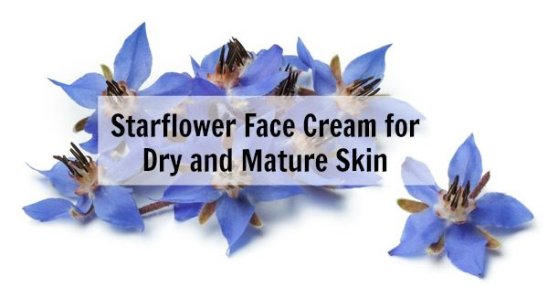 Shea, Starflower and Seabuckthorn Face Cream recipe for dry and mature skin