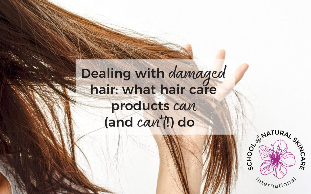 Dealing with Damaged Hair: What Hair Care Products Can (and can't!) Do