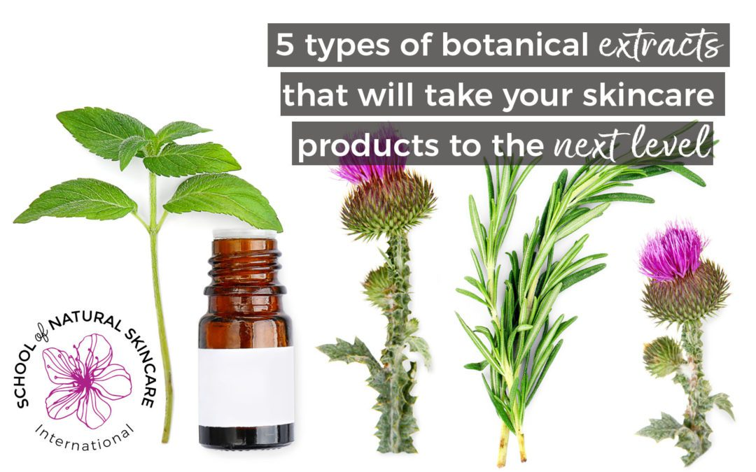 5 types of botanical extracts that will take your skincare products to the next level