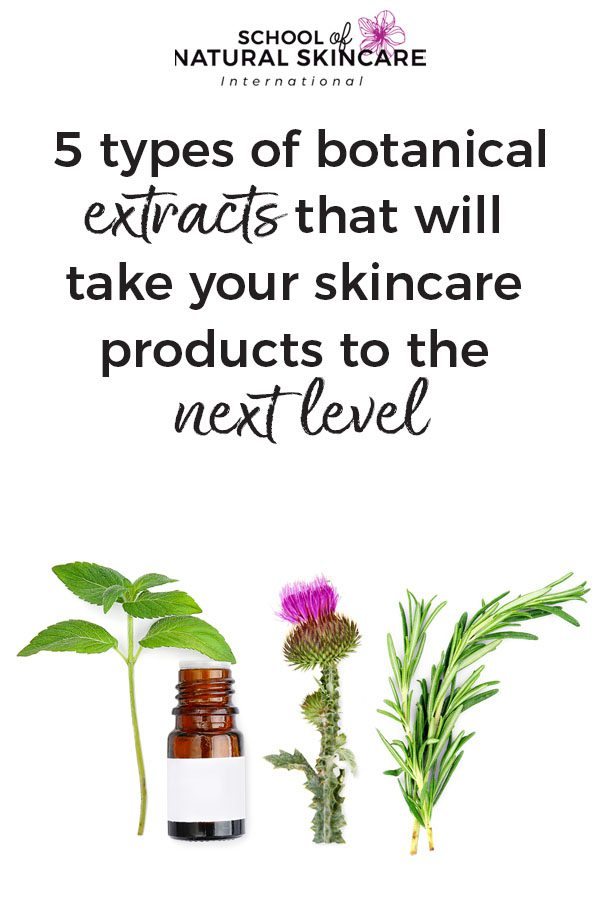 5 types of botanical extracts that will take your skincare products to the next level Skincare Formulation