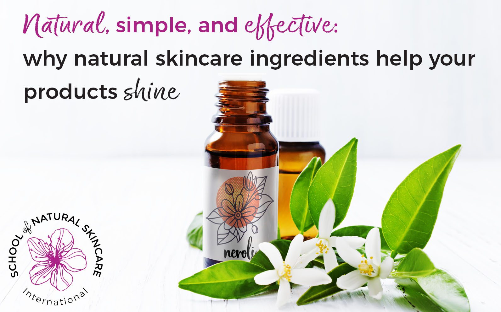 Natural Simple And Effective Why Natural Skincare Ingredients Help Your Products Shine School Of Natural Skincare