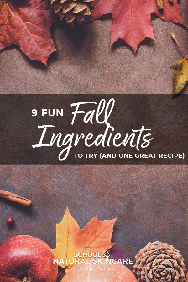 9 Fun Fall Ingredients to Try (And One Great Free Recipe!) Natural Bodycare recipes Natural Skincare Ingredients