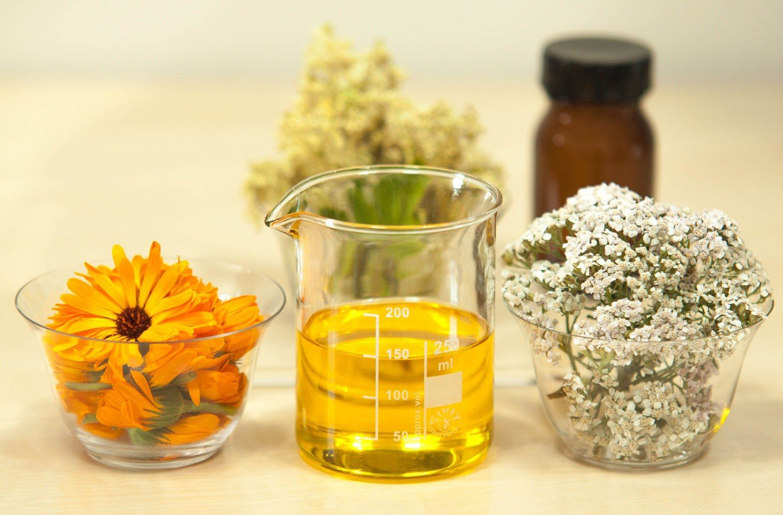 Carrier Oils: Finding the right carrier oil for your skin Natural Skincare Ingredients