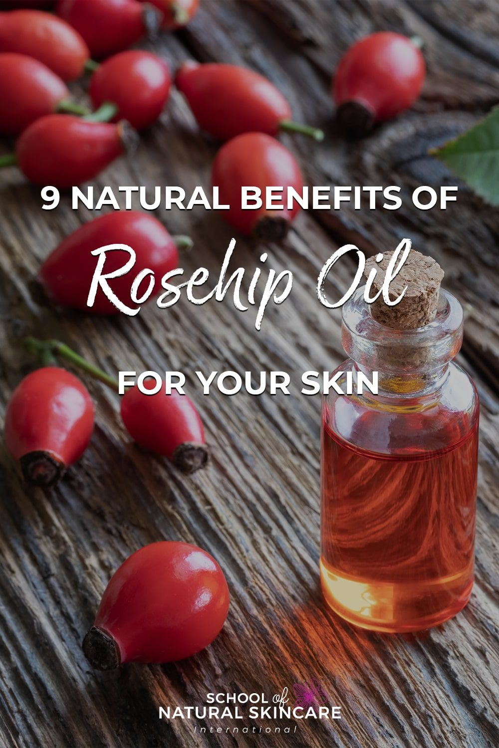 9 Natural Benefits of Rosehip Oil for Your Skin Natural Skincare Ingredients
