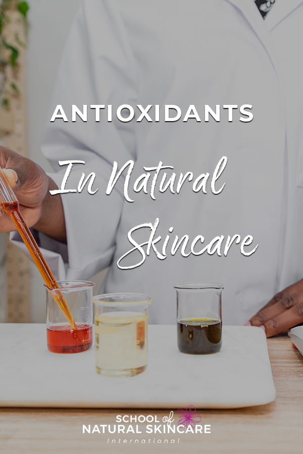 Antioxidants in Natural Skincare Natural Skincare Ingredients